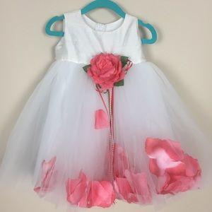 Infant Sz 12 Months Rose Petal Dress